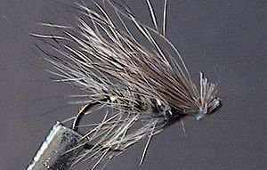Elk Hair Caddis.jpg